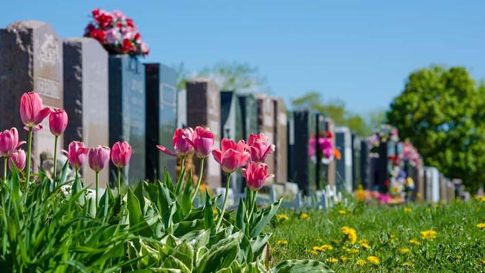 Tipos de cemitério: conheça cada um deles